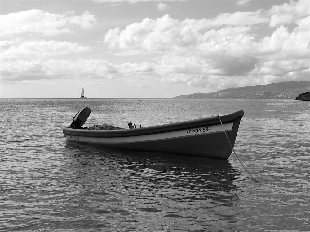 Pêche et plaisance