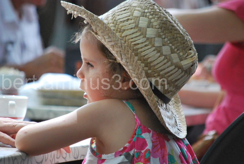 Provence 2011