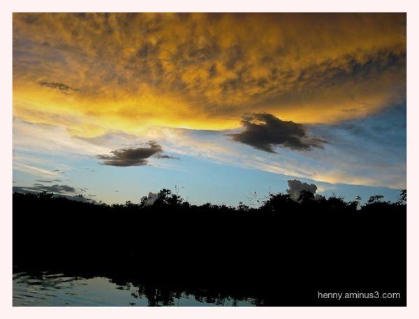Amazone light