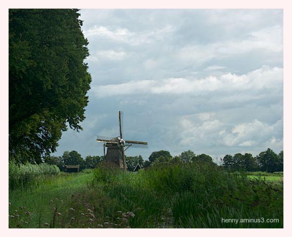 Hollands Landschap Loenen a/d Vecht