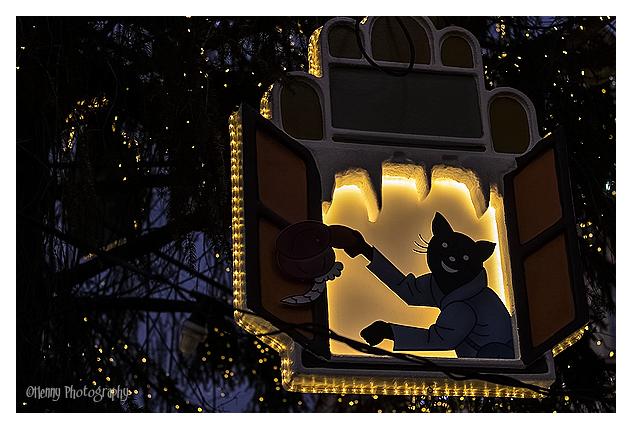 silhouet cat