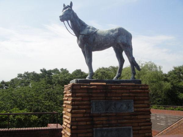 A statue of Tokinominoru, a great racing horse