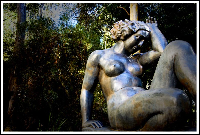 Sculptured Lady