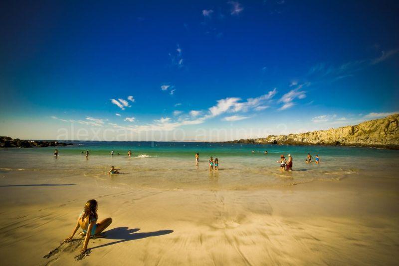 Wallpaper sunny beach