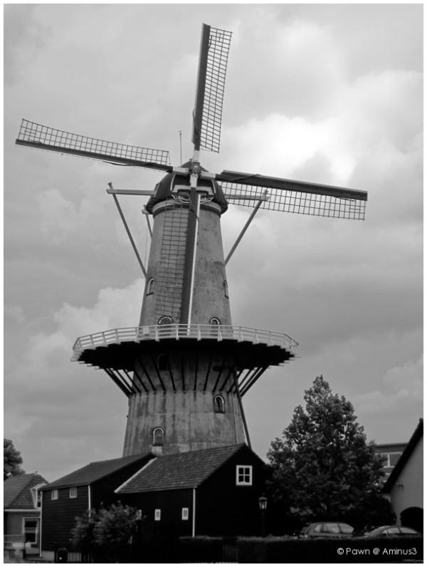 The mill in Wateringen