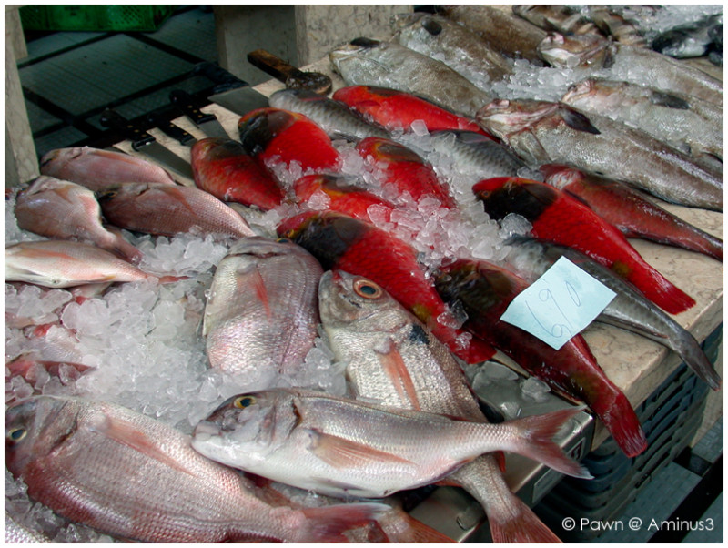 Loads of fresh fish in Madeira