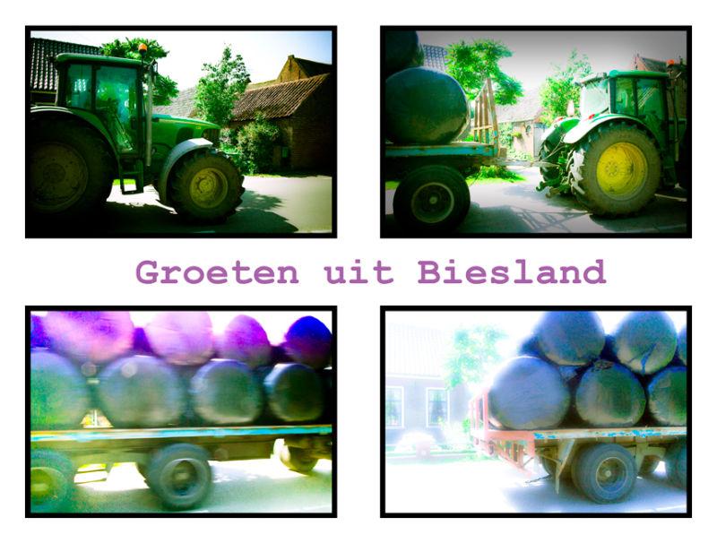 Diana farm