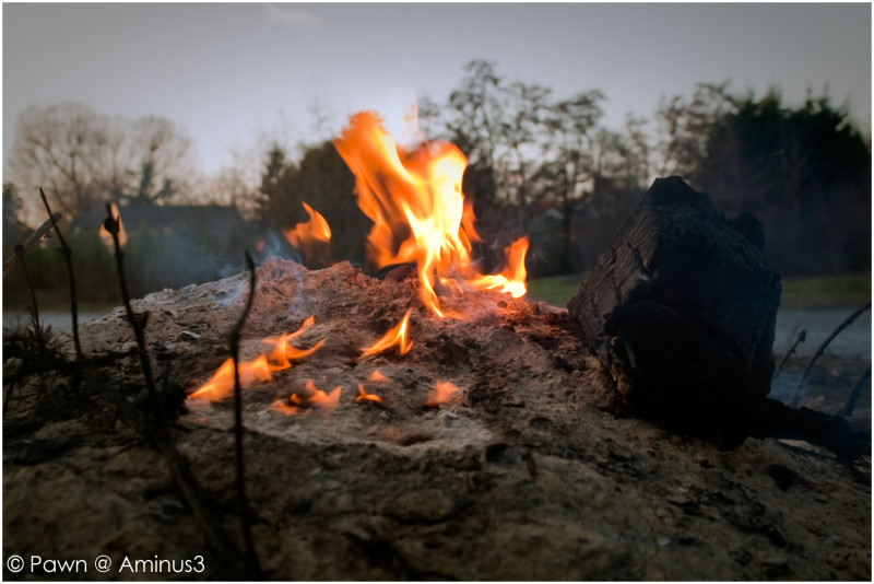 Smoldering bonfire on January 1st