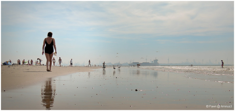 A day at the beach in Hoek van Holland