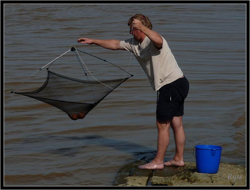 Le geste auguste du... pêcheur de crevettes