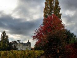 L'automne vient d'arriver