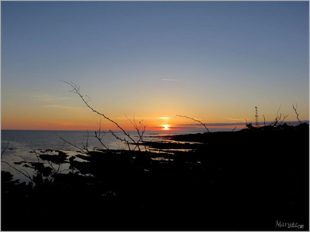 Piriac-sur-Mer (4/4)