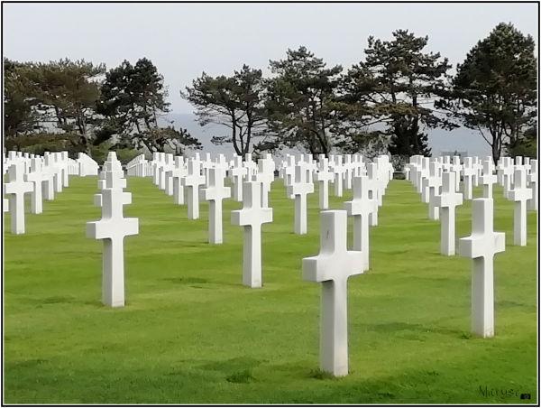 Le cimetière américain  (11/14)