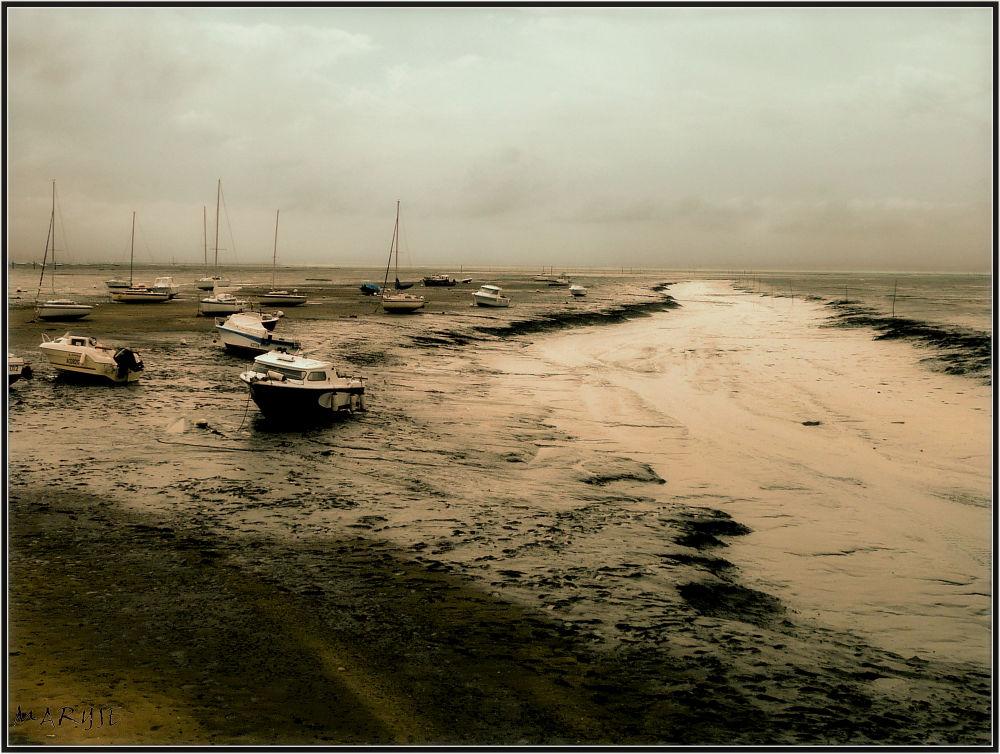 A marée basse...