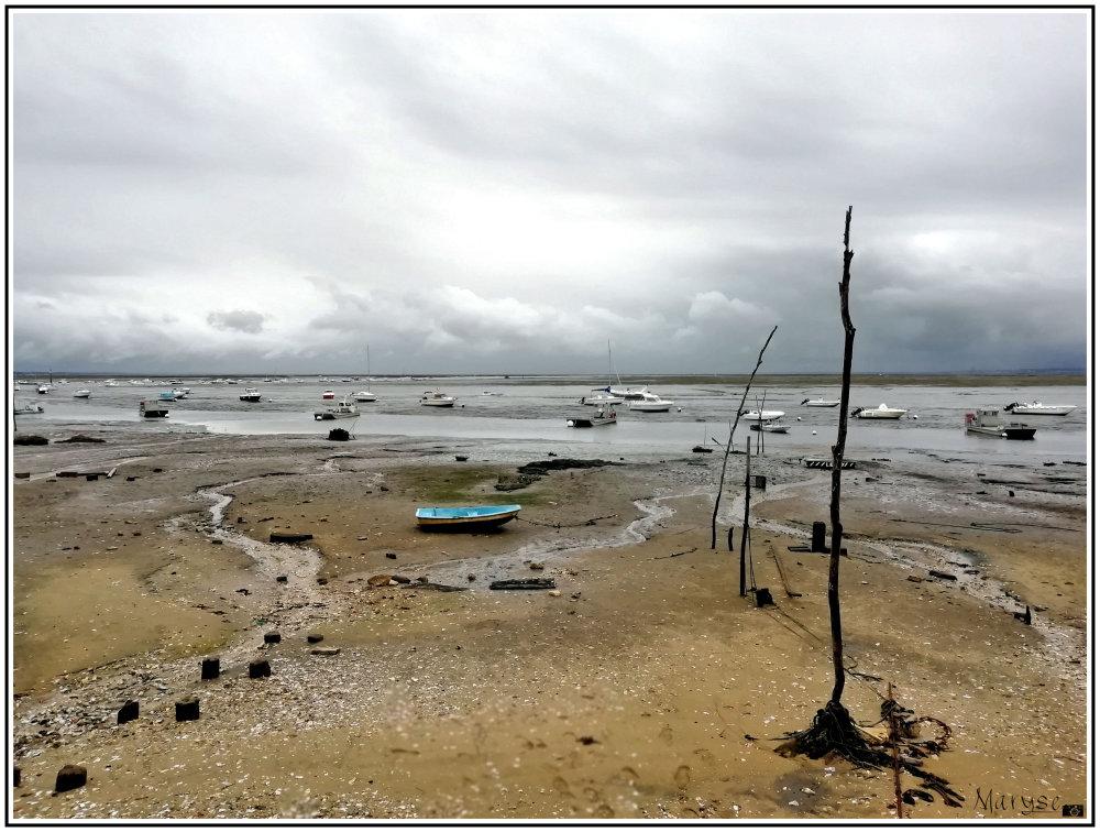 Claouey à marée basse