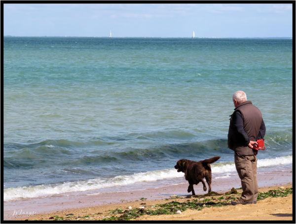 Le vieil homme et.... son chien