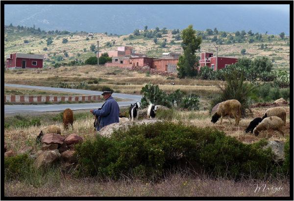 Le gardien de chèvres