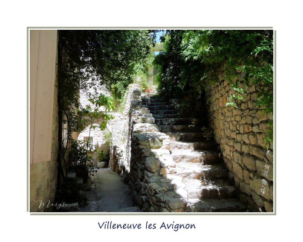 Villeneuve lès Avignon 1/3
