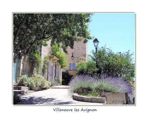 Villeneuve lès avignon 2/3