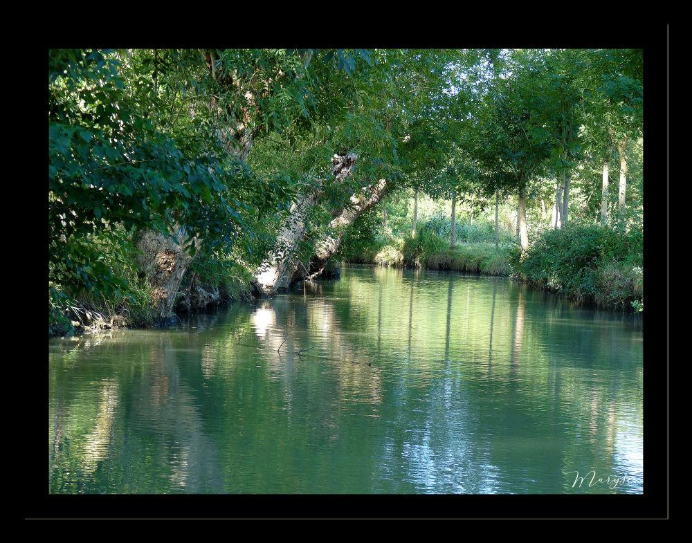 Le Marais Poitevin - 1