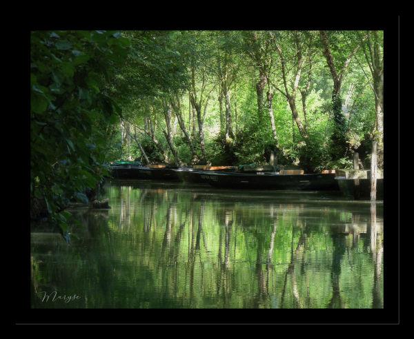 Le Marais Poitevin - 3