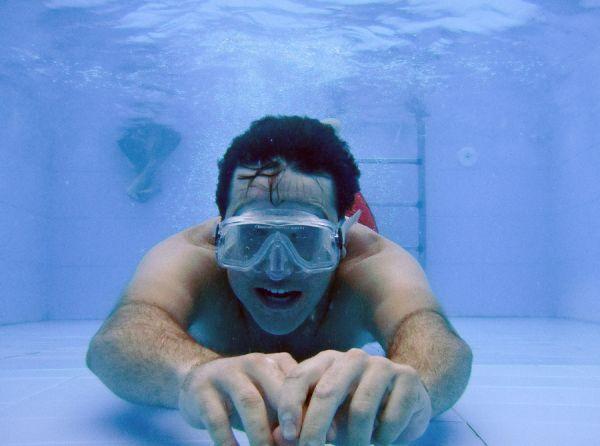 Un tiburón de piscina