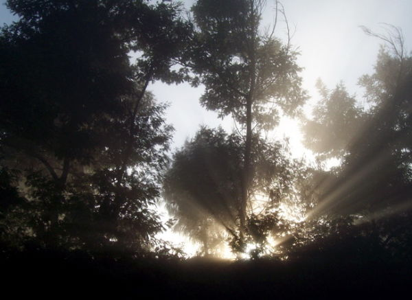 Shine of God