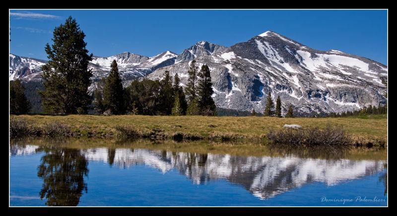 Mount Dana - Tioga pass entrance - Yosemite