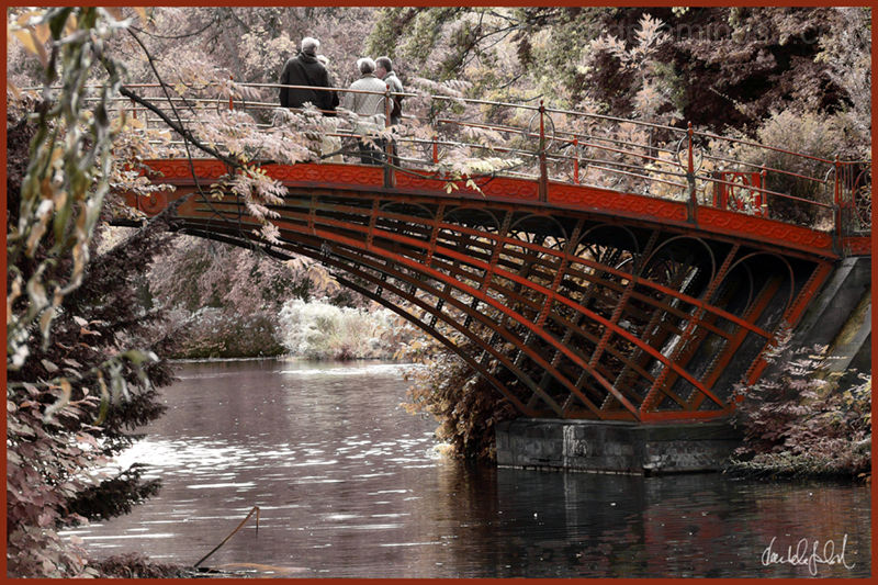 the red bridge 1/2