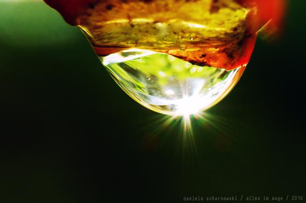 liquid jewels ii
