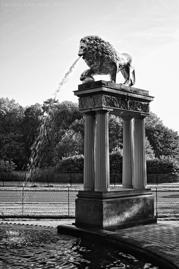 one lion of the lion´s fountain