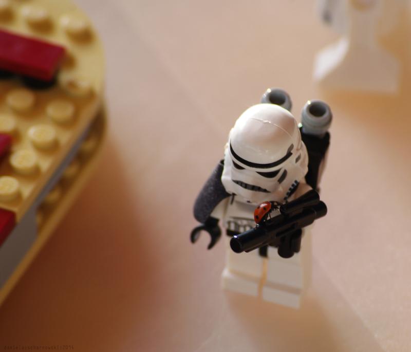 ladybird vs. stormtrooper
