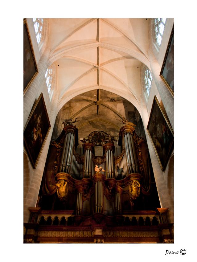 La Basilique Notre-Dame de Dole -3