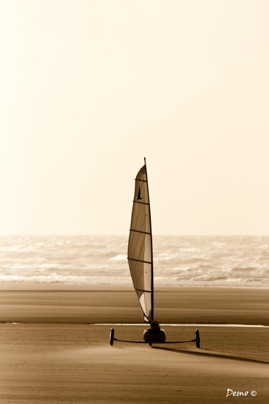 Une promenade en mer