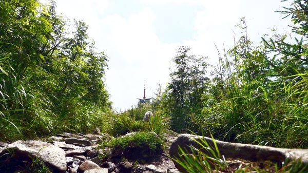 cesta k Lyse hore