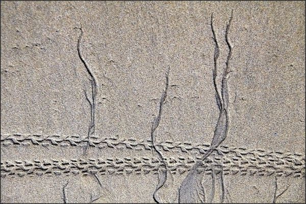 Au fil du sable 9