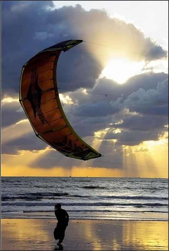La danse du vent
