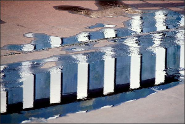 Flaques d'eau dans l'enclos (2)