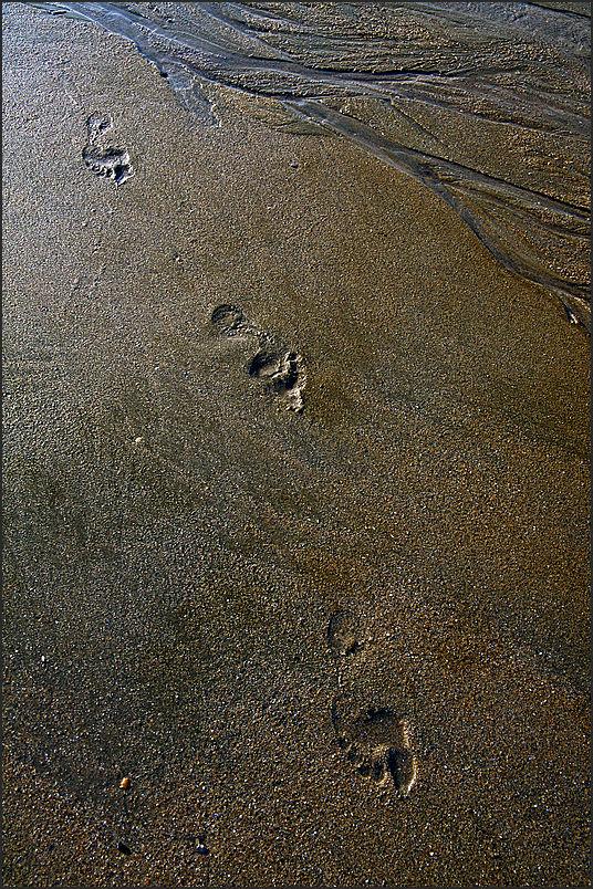 Au fil du sable -28