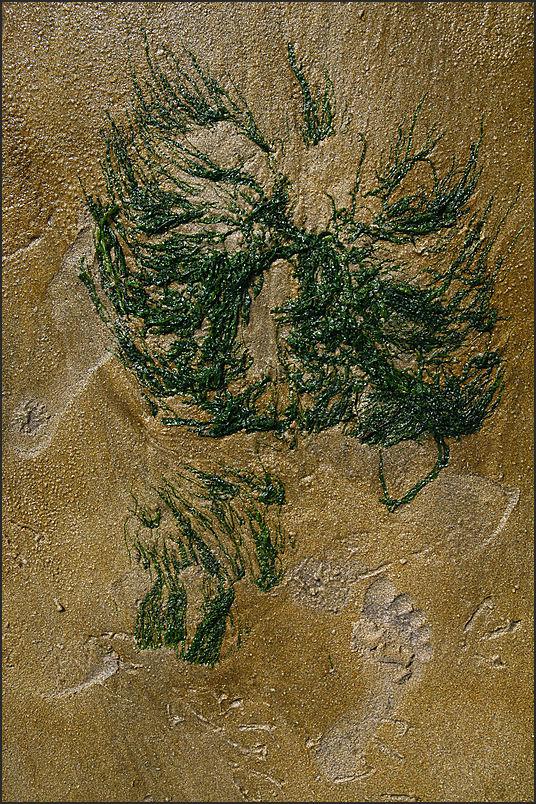 Au fil du sable -31