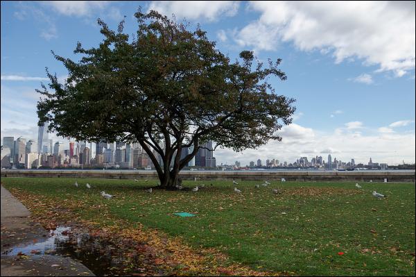 Manhattan depuis Ellis Island 3/3
