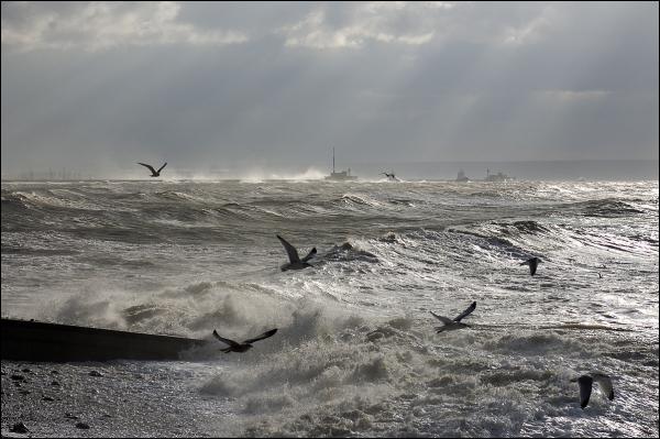 Lumière d'hiver sur Le Havre -4