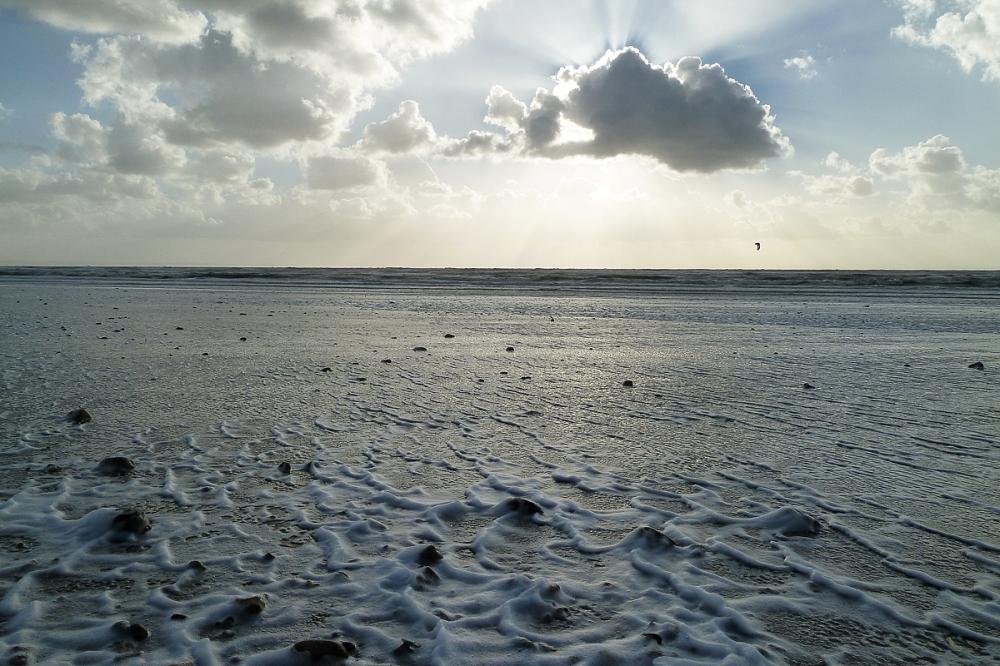L'écume au bord des vagues
