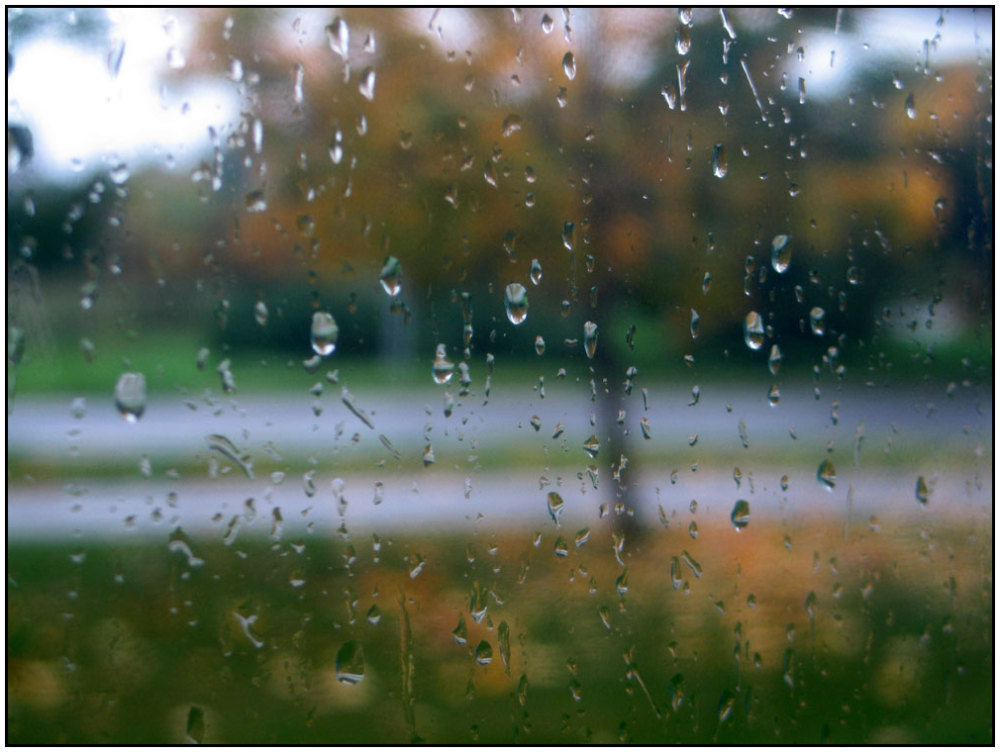 Weather, rain, drops