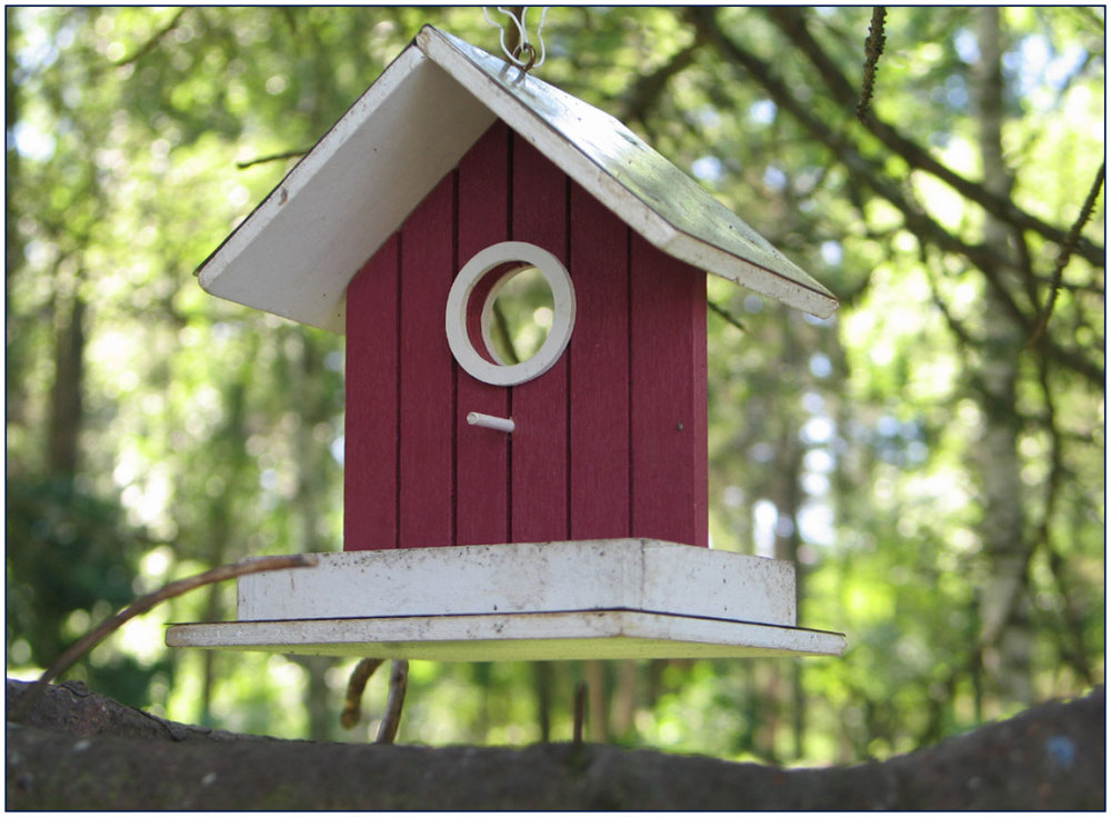 Bird, house