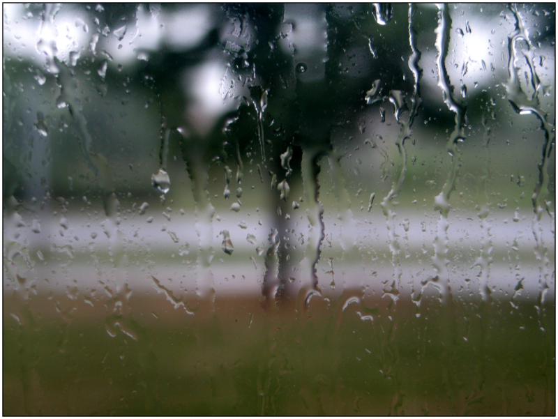 Summer, rain