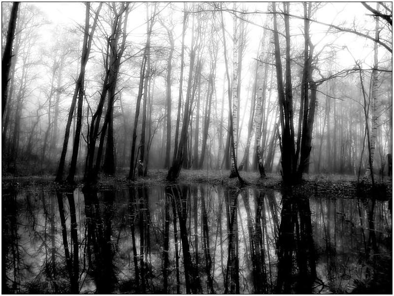Black & White landscape