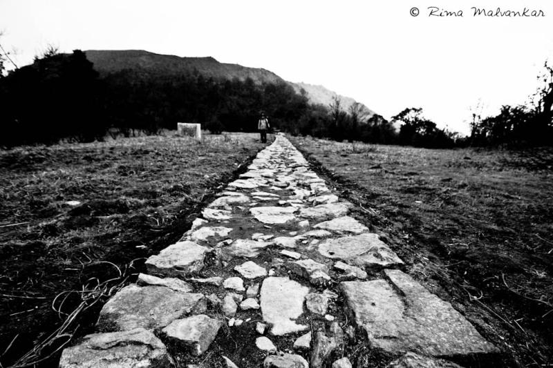 Rustic road  enroute Sandakphu
