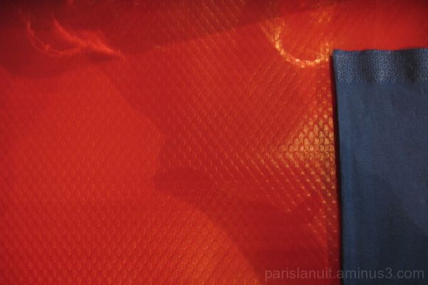 Fantaisie en rouge et bleu