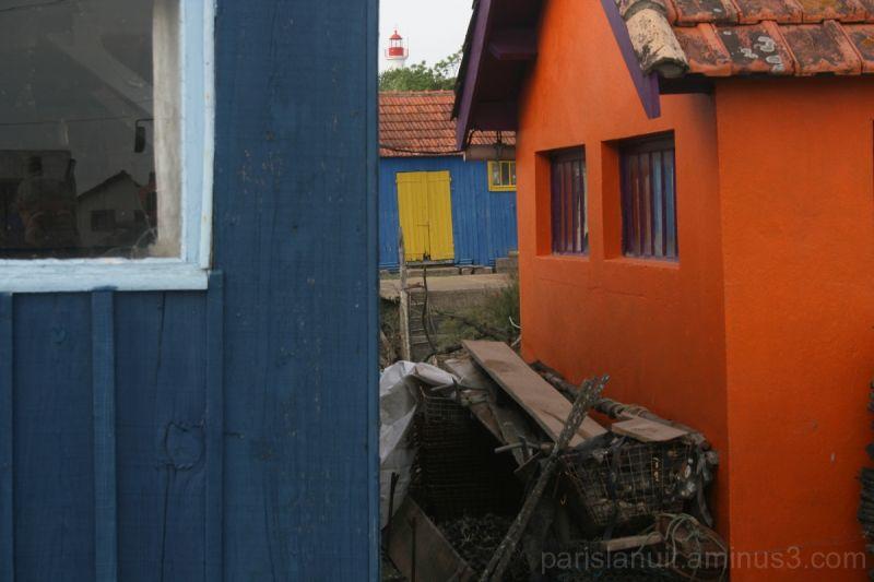 En jaune et bleu (4)
